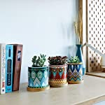 succulent-plant-pots-3-inch-small-ceramic-cylindrical-planter-containers-for-flowers-or-cactus-with-drainage-hole-and-bamboo-tray-mandala-patterns-set-of-3