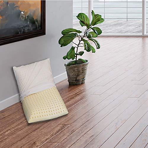 Sleepys Cojín de látex natural, 74 x 42 x 10 cm de altura, jabón perforado con funda de jersey 100 % algodón – Almohada látex Talalay hipoalergénica