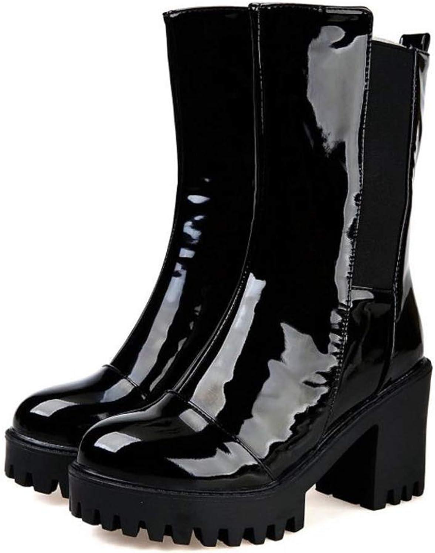 FAY WATERS Women's Fur Short Boots Shine Fashion Warm Winter Thick High Heels Platform Mid Calf Booties