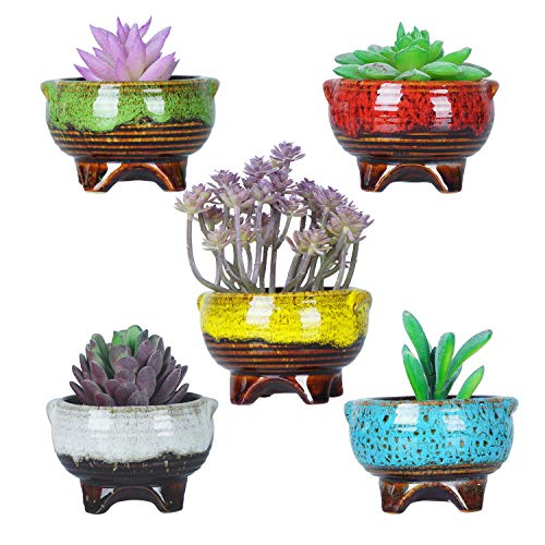 10cm süße moderne Keramik Runde kleine saftige Kaktus Pflanzer Topf Stativ Mini Glasur Blumen Pflanze Container winzige Töpfe mit Drainage perfekt für Schreibtisch oder Fensterbank Packung mit 5