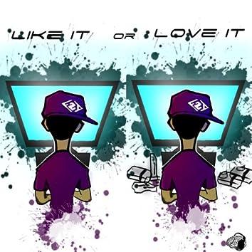 Like It or Love It - Single