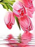 5d DIY diamante bordado cuentas conjunto tulipán mosaico flor decoración del hogar hecho a mano diamante pintura A4 45x60 cm