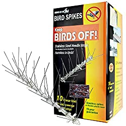 The Bird-X Stainless Steel Bird Spikes
