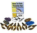 Harmony Fishing - Tungsten Flipping Jig 20 Piece Kit - 3\/8oz Flipping Jigs, Skirts, Rattles, Bait Pegs, 6pk NetBait Paca Chunk Baits