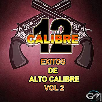 Exitos De Alto Calibre Vol.2