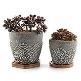 TAU Cement Plant Pot