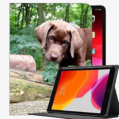 Caja Inteligente para el iPad Air 2, Hocelos de Perros Ears Funda de Haz de Haz Cubierta Delgada para iPad Air2 9.7 Pulgadas
