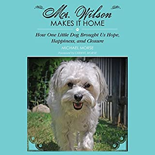 Mr. Wilson Makes It Home cover art
