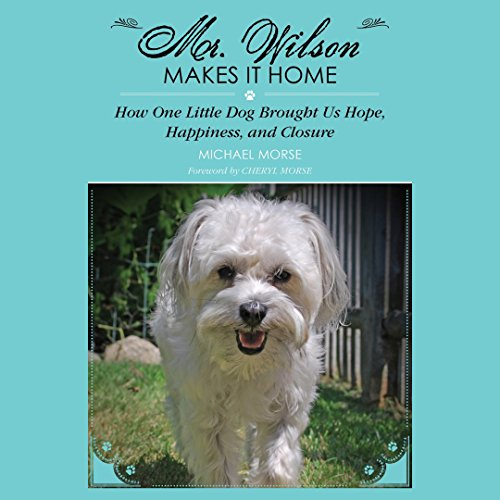 Couverture de Mr. Wilson Makes It Home
