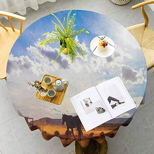 DRAGON VINES Outdoor Tablecloth Horse in Monument Valley Open Sky with Clouds in Arizona America Landscape Print Cream Blue Table Mat Buffet Tables, Weddings, Parties and Dinners Diameter 50'