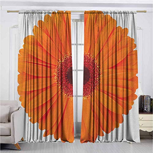 Orange Super Soft Luxury Curtains for Insulated Windows Flower of a Vivid Petals Close Up Image Fresh Garden Botany Spring High-Performance Privacy Protection W63 x L63 Inch
