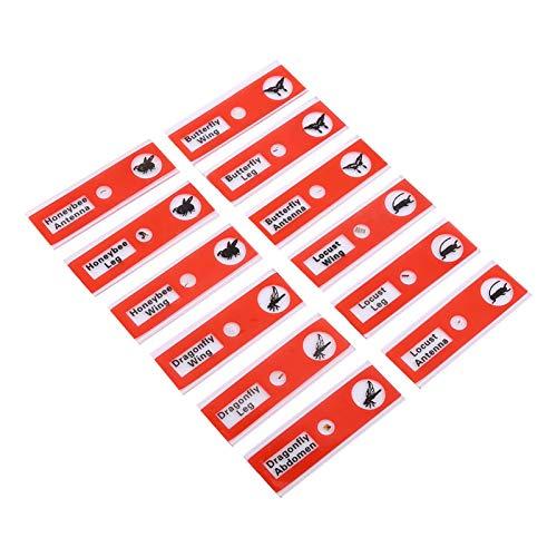 Professional Type 12pcs Prepared Microscope Slides, for Kids Children Students Enlighten Stereo Microscope Slide(red)