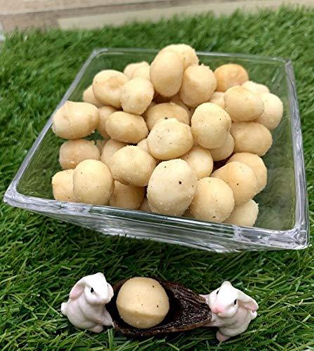 【訳あり】素煎りマカダミアナッツ 1kg ジップパック入り