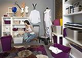Rotho Allzweckbox Living aus Kunststoff, universell einsetzbar als Aufbewahrungsbox in Kinderzimmer, Büro, Bad, Wohnzimmer Etc, 2 l, ca. 25.2×13.4×9 cm (LxBxH), Weiß, Auch Andere Farben verfügbar - 6