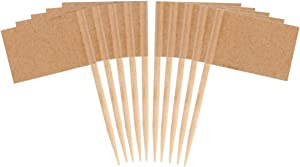 JAVD 100 Pcs (Kraft Paper) Blank Toothpick Flag Fruit Cupcake Markers Toothpick Flag Kraft Paper Markers Toothpick Flag