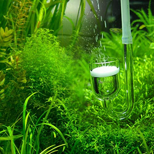 Rhinox Nano CO2 Diffuser - Keeps Aquarium Plants Healthy with CO2 Injection - 3-Minutes to Setup - Works Best with Pressurized CO2 Tank - for Tank Size Under 20 Gallon