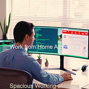 Spacious Working at Home