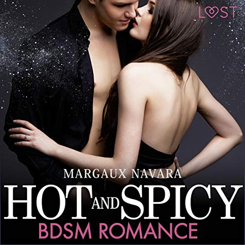 Hot and Spicy - BDSM Romance Titelbild