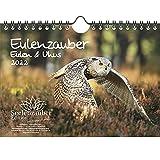 Eulenzauber Eulen und Uhus DIN A5 Wandkalender für 2022 - Geschenkset Inhalt: 1x Kalender, 1x Weihnachtskarte (insgesamt 2 Teile)