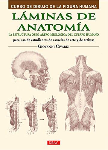 Curso De Dibujo De La Figura Humana. Láminas De Anatomía (Curso Dibujo Figura Humana)
