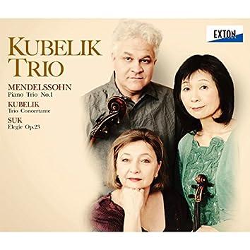 メンデルスゾーン:ピアノ三重奏曲第 1番、クーベリック & スーク