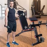 HOMCOM Foldable Adjustable Dumbbell Weight Lifting Sit Up Ab Bench Home Training Gym Incline Multiuse Workout Exercise Fitness