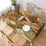 Mantel Rectangular,Leopardo en un árbol en la Reserva de Sabi Sands, Manteles Lavable Reutilizable de Mantel para jardín Habitaciones decoración de Mesa 152 x 228cm