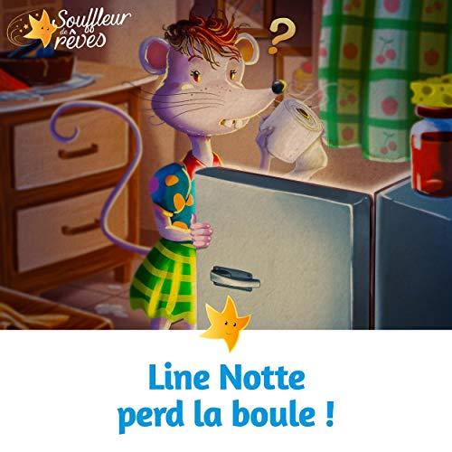 Couverture de Line Notte perd la boule !