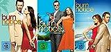 Burn Notice Staffel 1-3