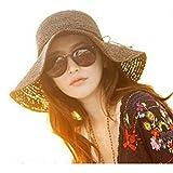 HugeStore Floppy Foldable Wide Brim Chic Sun Hat Sun Visor Summer Beach Straw Hat for Women Ladies Brown
