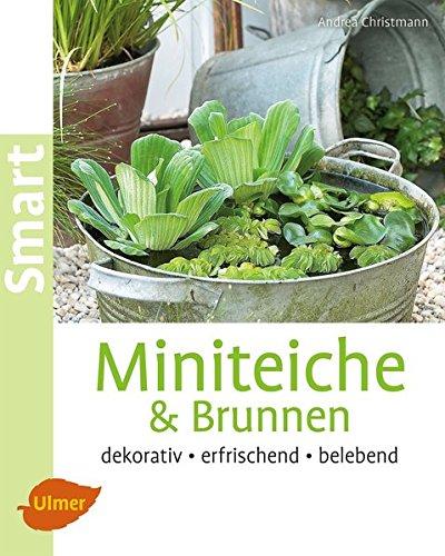 Miniteiche und Brunnen: Dekorativ, erfrischend, belebend (Smart Gartenbuch)