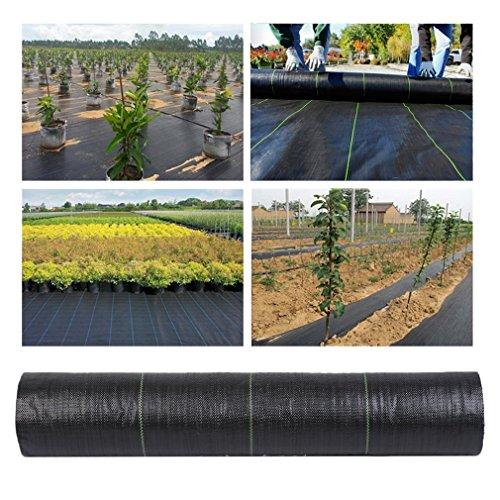 Sebastianee Toile de paillage Anti Mauvaises Herbes 2x50M, Membrane de Couverture de Sol en Tissu de Lutte Contre Les Mauvaises Herbes