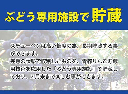 津軽スチューベンぶどう2kg×2箱(1箱6~9房)秀品L~2L青森県鶴田町産スチューベン日本一の産地から直送