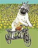 N\A Pintura por Número De Kit DIY Kit Manualidades Regalo para Adultos O Niños Decoraciones para El Hogar Perro Animal Y Flores Amarillas. with Frame
