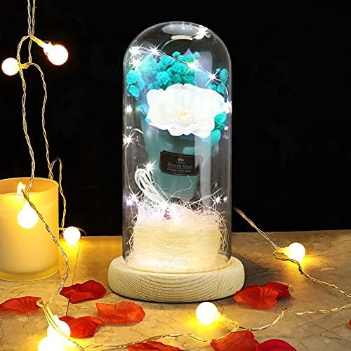 GUJIN Ramo de regalo azul eterno, cúpula de cristal, rosa artificial, luz LED con base de madera, día de San Valentín, aniversario, boda, regalo de cumpleaños para mujeres, mamá, novia