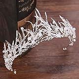 PPuujia Accesorios para el cabello de color plateado tiara de novia corona de moda perla reina boda corona diadema accesorios de joyería de pelo al por mayor (color de metal: HG191)