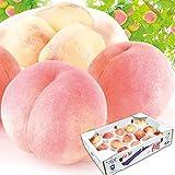 国華園 桃 山梨の桃 ご家庭用 5㎏ 1箱 食品