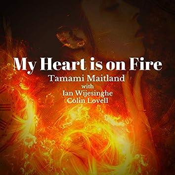 My Heart is on Fire (feat. Ian Wijesinghe & Colin Lovell)
