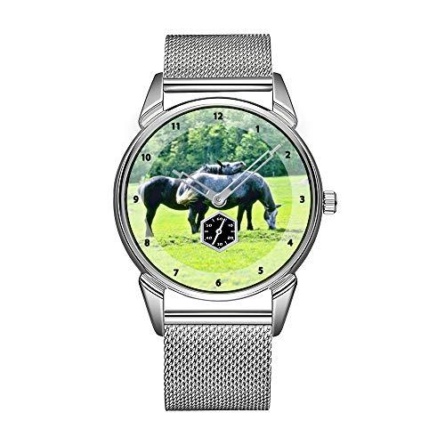 Mode herenhorloge zilver roestvrij staal waterdicht horloge heren topmerk herenhorloge Belgische paarden horloges
