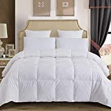 Decroom 100% Cotton Quilted Down Comforter with White Goose Duck Down Feather Filling-Lightweight Duvet Insert- Queen/Full