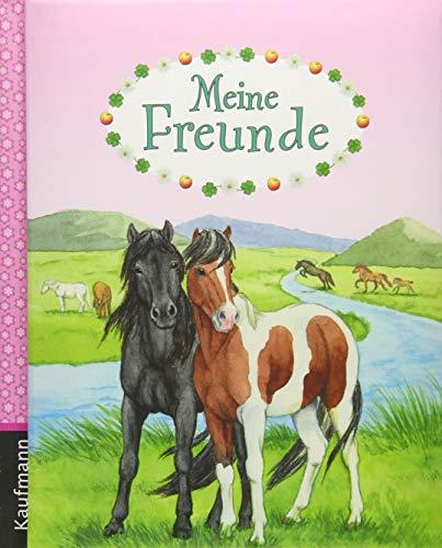 Meine Freunde (Freundebuch für die Schule / Meine Schulfreunde für Mädchen und Jungen)