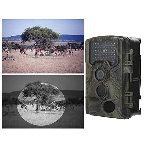 JoyFan Hinterkameras Nachtsicht Jagdkamera 1080P HD Digital Infrarot Wildlife Scouting Tierkameras Wasserdicht