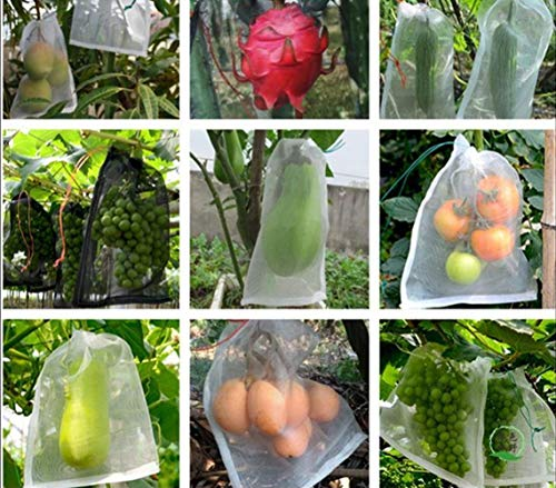 HUOELIU 50 Pieces Fruit Protection Bags Garden Netting Bags Against Mosquitos, Bugs, Insects, Birds (4inch6inch, White Polyethylene mesh Bag)
