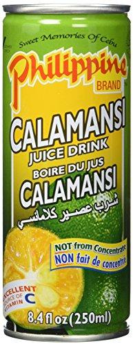 Philippine Brand Drinks Calamondin, 24er Pack (24 x 250 ml)