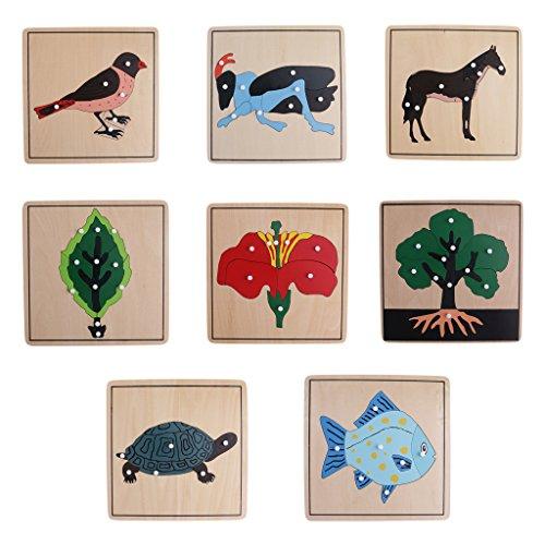 Sharplace Montessori Pianta Aninale Fiore Uccello Set Di 8 Pezzi Di Puzzle Per Bambini Giocattoli Educativi