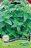 Germisem Mentha Piperita Semillas de Menta 0,2 g