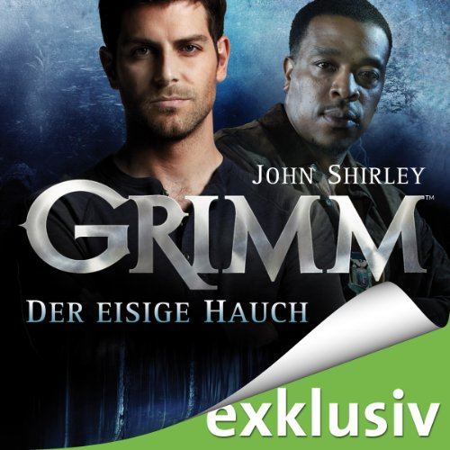Der eisige Hauch audiobook cover art