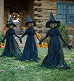 Lighted Halloween Witch Stakes, Creepy Illuminated Halloween Yard Witches, Screaming Witches Sound-Activated Sensor, DIY Outdoor Decor Life Witch Decoration Courtyard (1Pcs)
