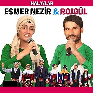 Halaylar