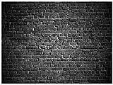 AIIKES 7x5FT Fondo de fotografía de vinilo Fondo de fotografía de pared de ladrillo negro Fondo de pared de ladrillo retro Fondo de pared de ladrillo Fondo de disparo de retrato retro 11-894